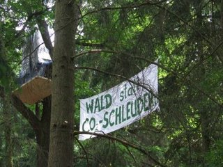 robinwood_waldkelsterbach_20080528_005_800x600