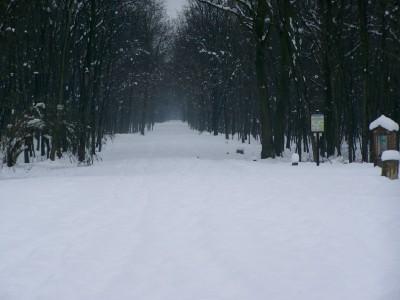 Via Gaggio con la neve